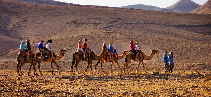 Camel riding near Bedouin camp