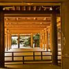 Tokyo, Meiji Shrine view