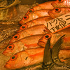 Tokyo, Tsukiji central fish market, golden eyes