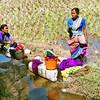 Washing clothes near Somnathpur