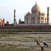 Agra, Taj Mahal, from across Yamuna River at sunset