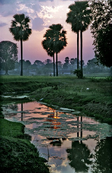 Stream near Bodh Gaya, India at sunset