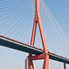 Yangpu Cable Bridge