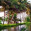 Kerala, Arabian Sea backwaters, sunset scene