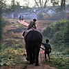 Mudumalai Wildlife Sanctuary, elephant camp, rider and helper