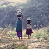 Korumba women carrying water, Mudumalai Wildlife Sanctuary