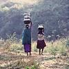 Korumba women carrying water, Mudumalai Wildlife Sanctuary