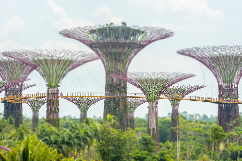 Gardens by the Bay 1 - Singapore