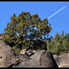 Petroglyphs and Contrail