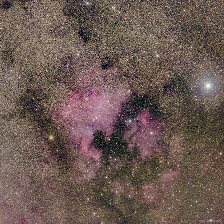 NGC 7000/IC 5070 – North America Nebula/Pelican Nebula