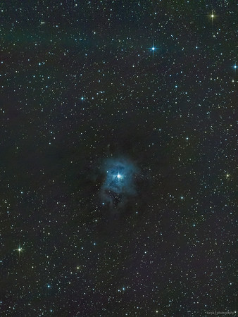 NGC 7023 – Iris nebula