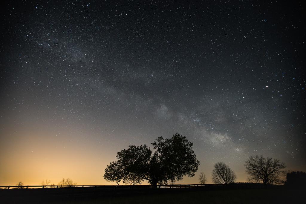 Reaching for the Stars || Delaplane, VA