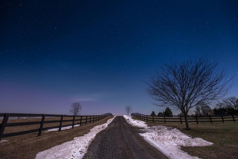 Virginia Stars