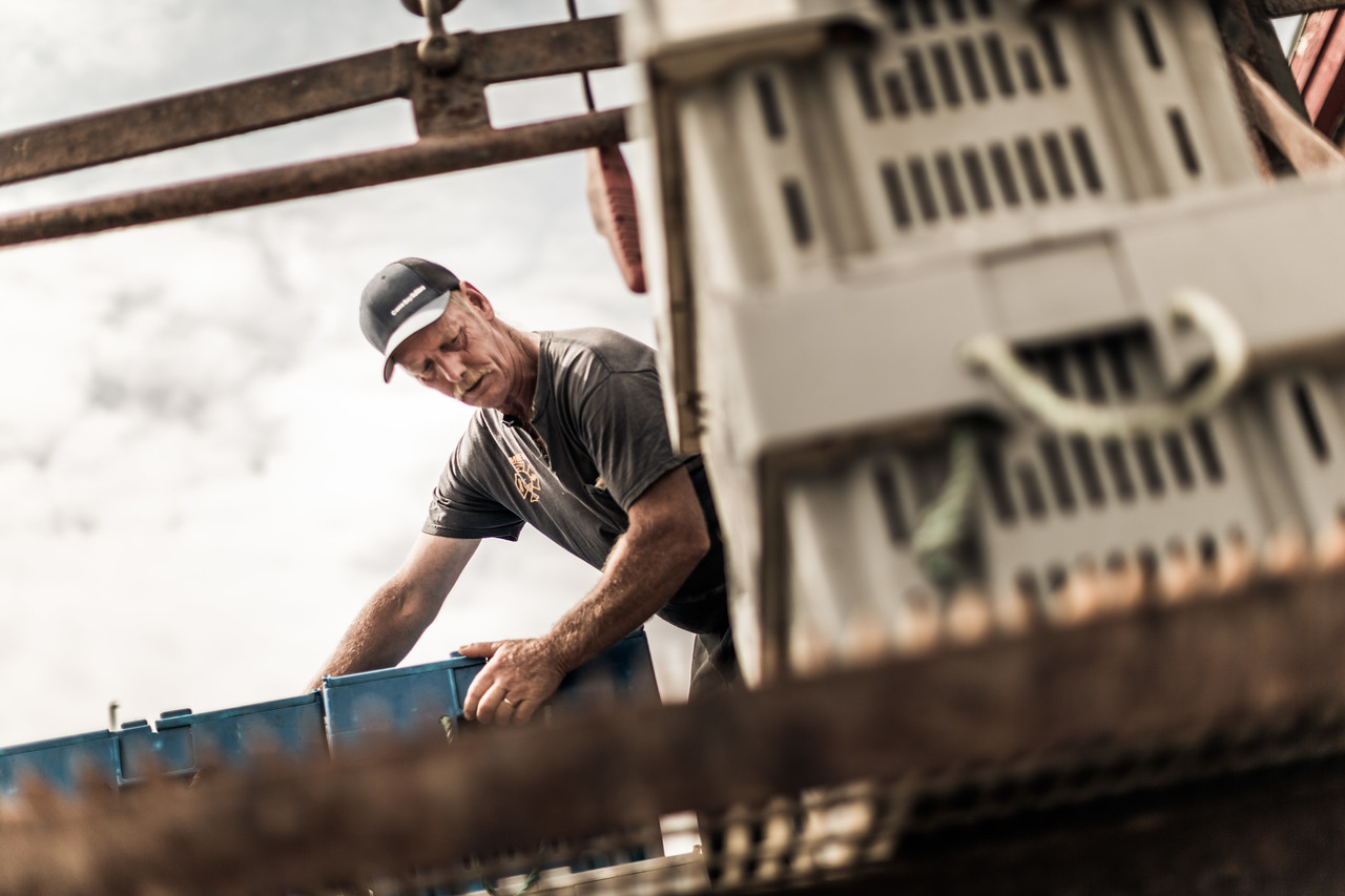 A worker moving blue crates.