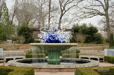 Botanical Garden-8