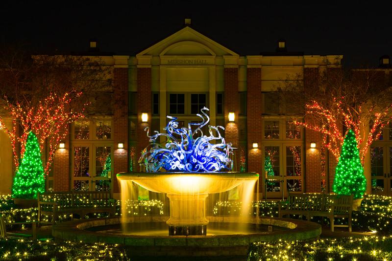Christmas at the Botanical Garden