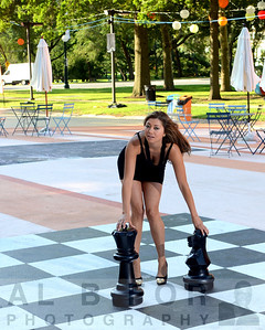 "August 12, 2013, The Board-OVAL- The Chess board and it's ""pieces"". pulling the character out of the individual."