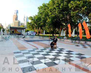 The Board- OVAL - Chessboard