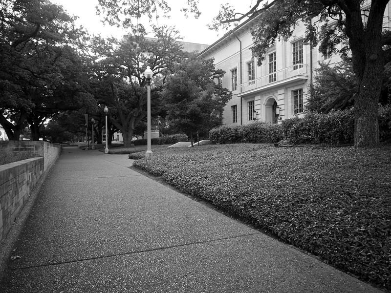Campus Walkway, University of Texas - Austin, Texas