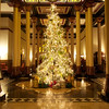 2013 Driskill Christmas Tree #3 - Austin, Texas