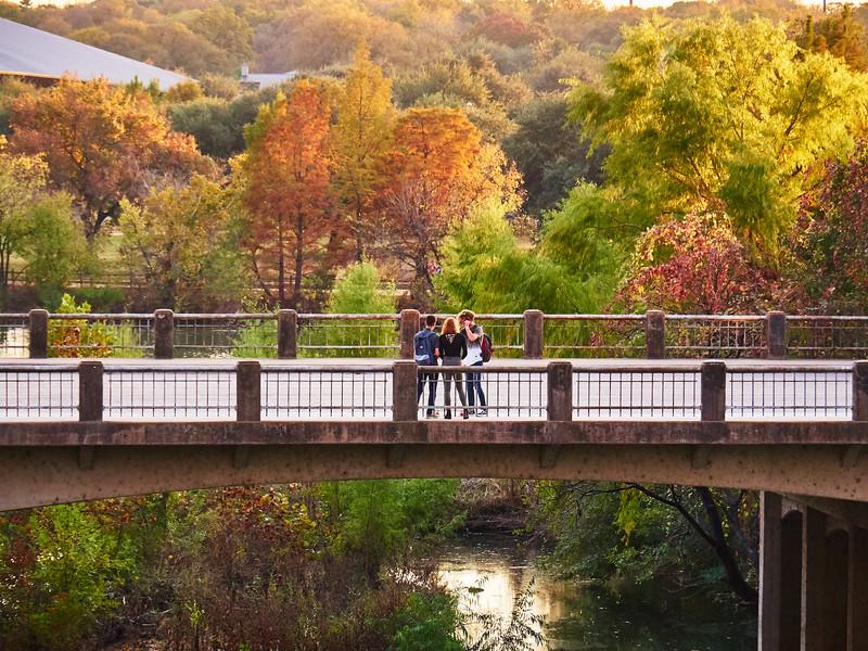 Modest Fall Color - Austin, Texas