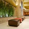 Lobby, Hilton Hotel - Austin, Texas