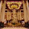 2014 Driskill Christmas Tree - Austin, Texas