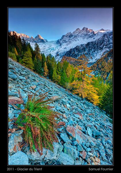 Glacier du Trient - Valais - Octobre 2011