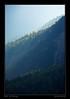 Val Chavagl, parc national - Grisons - Octobre 2008