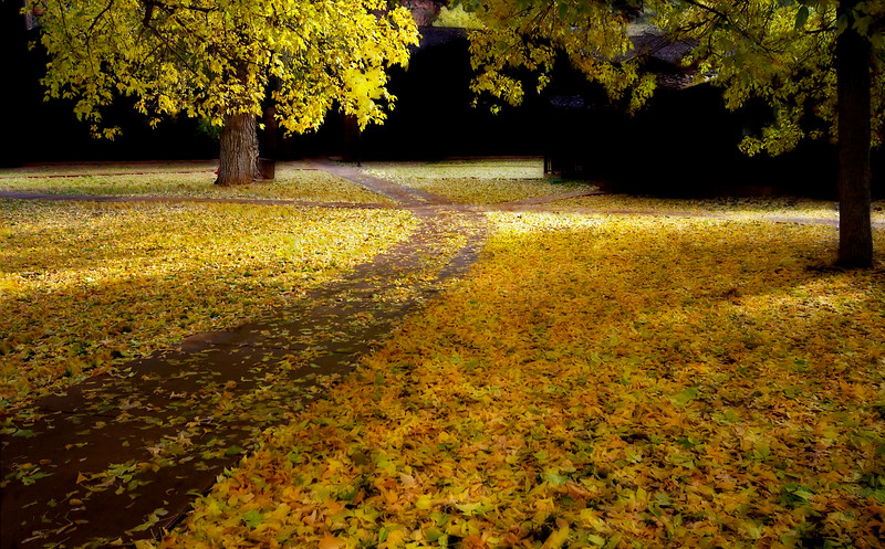 October Path*