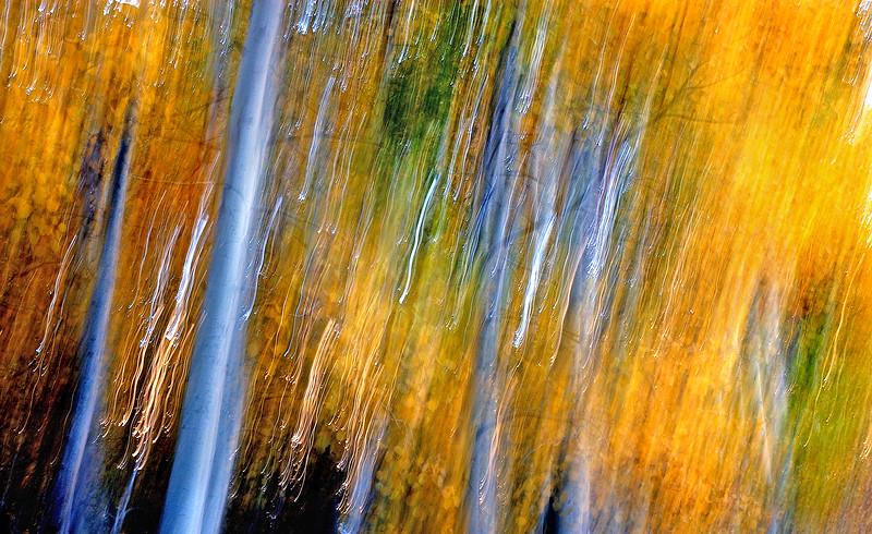 Aspen Dream    Sierra Nevada Range, California