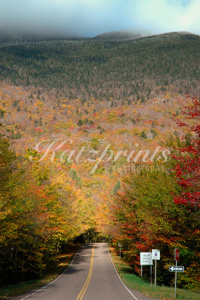 Morning lights falls on the road through Smugglers Notch State Park near Stowe, Vermont