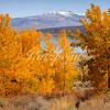 Mono Lake Colors