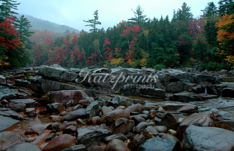 A rainy autumn day at the Swift river in New Hampshire