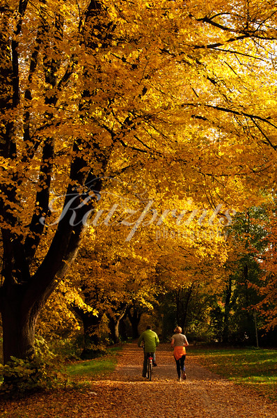 Autumn is a great time to enjoy the outdoors like this bicyclist and jogger in Germany.