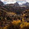 California Autumn
