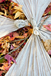 Autumn leaves in sack