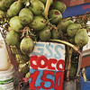 COCO NUTS. RIO DE JANEIRO.
