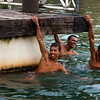 NEOPOLIS. SERGIPE. BRAZILIAN BOYS HANGING IN THE RIVER.