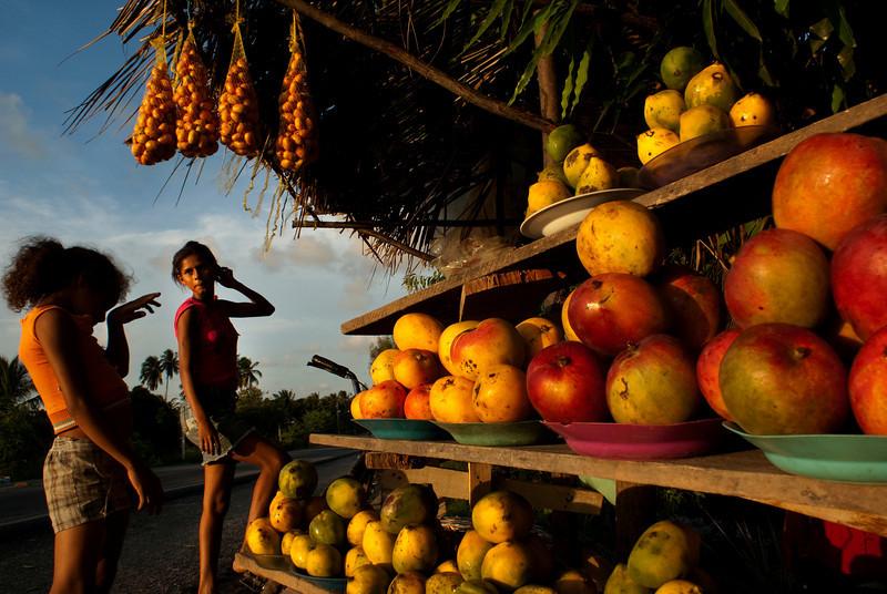 FRUIT SELLERS. BARRA DO SAO MIGUEL. MACEIO. ALAGOAS. BRAZIL.