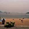COCONUTS ON THE BEACH. ON THE FOOT OF THE  SUGARLOAF MOUNTAIN. RIO DE JANEIRO.