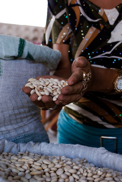 MACEIO. ALAGOAS. MARKET. FEIJAO SELLER SHOWS THE BEANS.