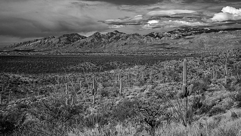 Catalina Mountains with Mt Lemmon in the background #2