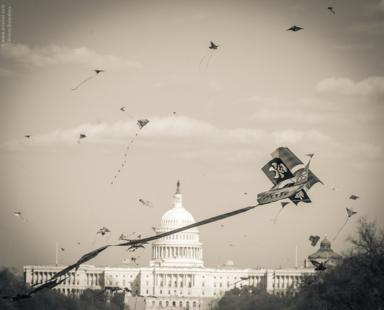 """Under Siege"" - Cherry Blossom Kite Festival, End of March 2013, Washington, DC."