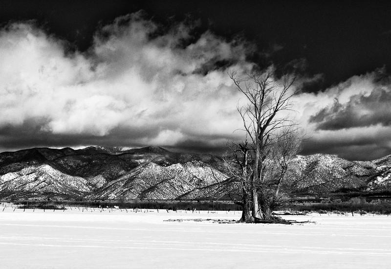 Snowstorm Taos Plateau