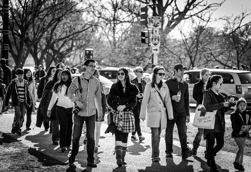 Vicinity of Washington Monument, Washington, DC, End of March 2013