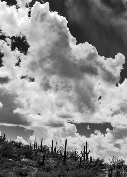 Clouds over Saguaro National Park East
