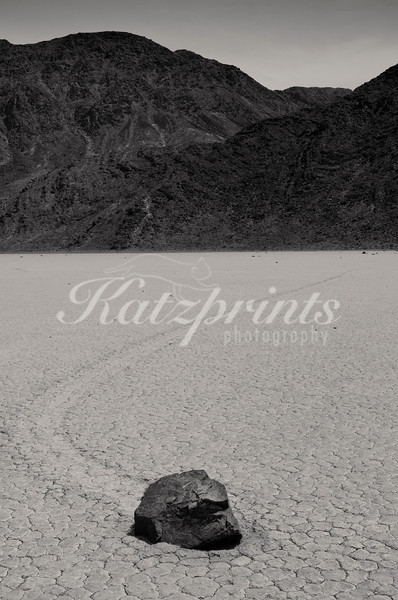 One of Death Valley's famous sailing stones left  a perfect curved track in the mud.
