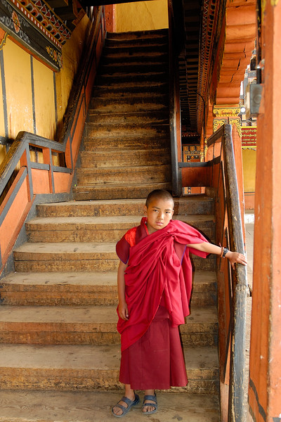 Young Buddhist monk in robes at the Dzong in Paro, Bhutan