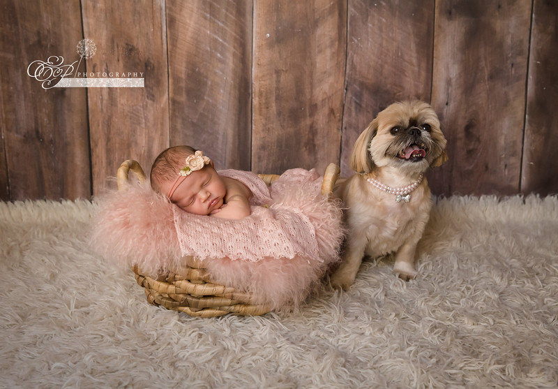 Newborn Photography in Jacksonville Florida